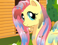 Pony Makeover Salon